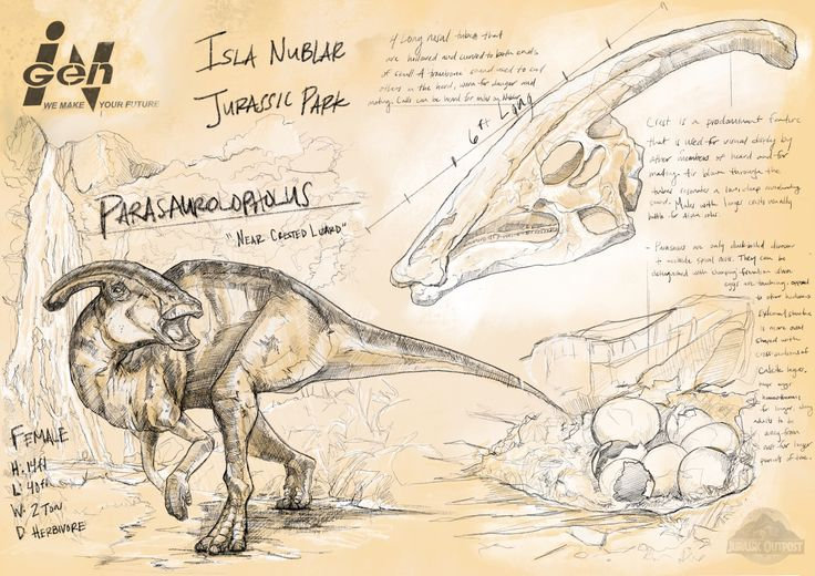 Parasaurolophus -