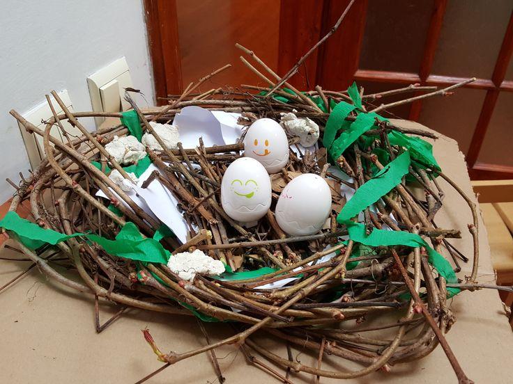 Birds and Nests@ Acorns Nursery Bucharest