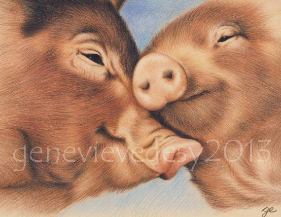 Original Drawing of Pigs in Love 5.75 x 7.5 inches by MatanteGe