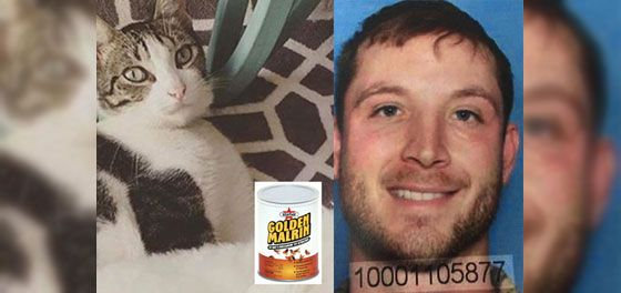 Deplorable Plea Bargain Given to Man Guilty of Poisoning Animals - In Defense of Animals