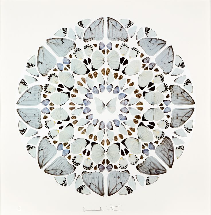 Butterfly painting by Damien Hirst (via other criteria) - the only thing that he's ever done that I like.