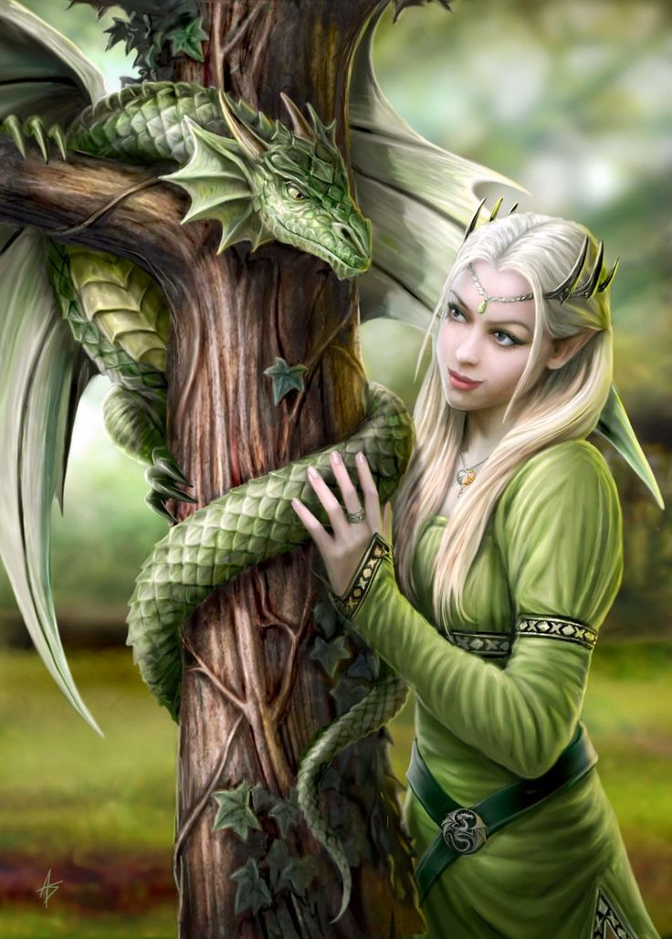 Elf with miniature dragon