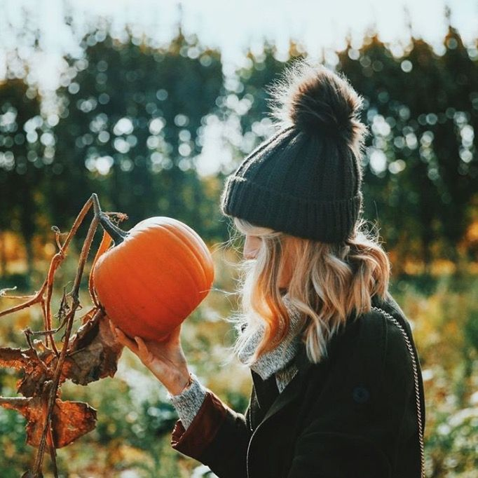 Hey my little blonde friend, have you been staring at the bloody pumpkin for an hour?  What country are you from?  It's enough, that one is mine mine mine.