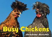 """Busy Chickens (Busy Book) by John Schindel: Hens, roosters, and chicks take center stage in the latest addition to the Busy Book series. Through gorgeous color photographs children will recognize chickens--both familiar and spectacularly fancy--busy performing actions like squawking, perching, leaping, and more.Reviews""""Those who don't love chickens need not apply. This full..."""