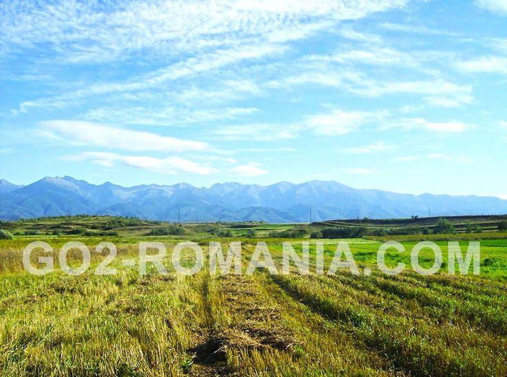 Fagaras Mountains called Transylvanian Alps, expression attributed to the French scientist Emmanuel de Martonne – cottage Podragu in Fagaras Mountains #mountains #Southern #Carpathians #Fagaras #east #west #NegoiuPeak #OltValley #LandoftheOlt #tectonic #steep #DepressionofFagaras #Olanului #Robita #Scarisoara #Nisipuri #Zarn #string #Câmpulung #Bradetu #Arefu #Jiblea #times #Bucegi #Moldoveanu #Negoiu #VistaMare #CaltunLespezi #VanatoarealuiButeanu #CornuCaltun #Hartopu #Dara