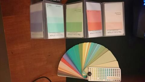 My Zyla palette is like the Toned spring Fan