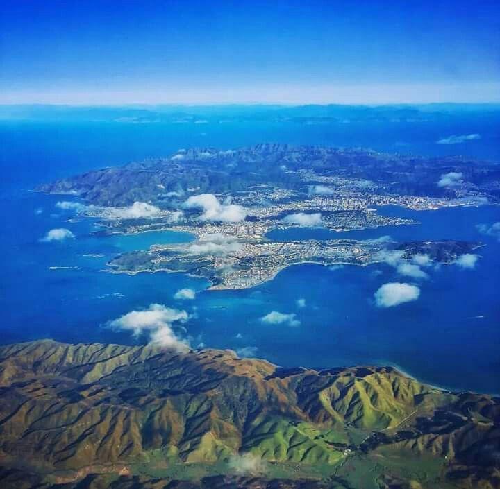 Wellington, home sweet home.