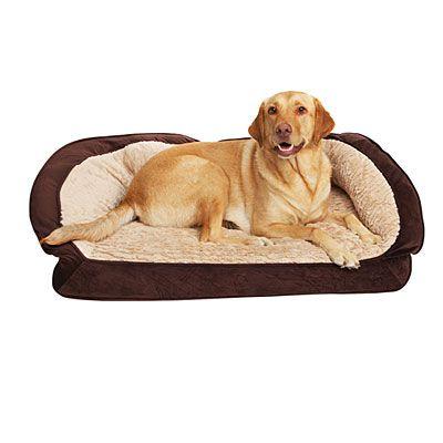 Big Lots Dog Beds Serta X