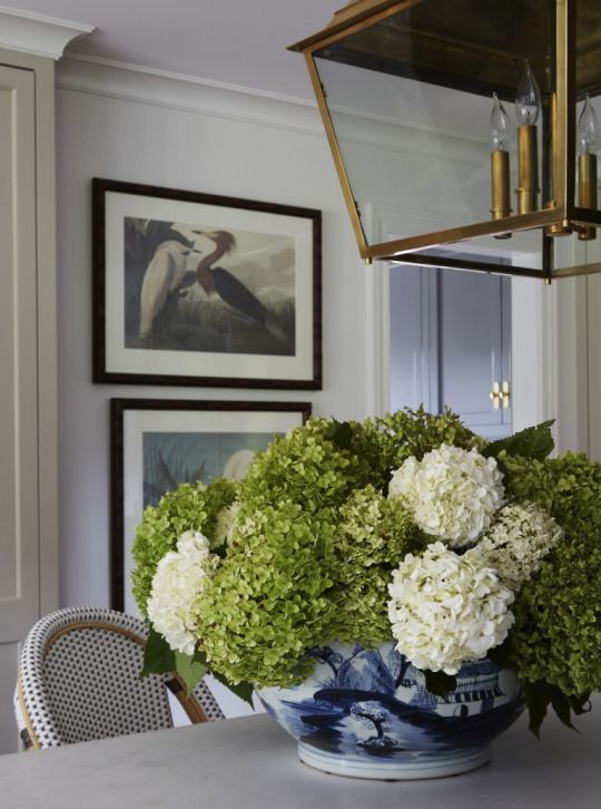 Hydrangea and a little white and blue accent. Traditional style