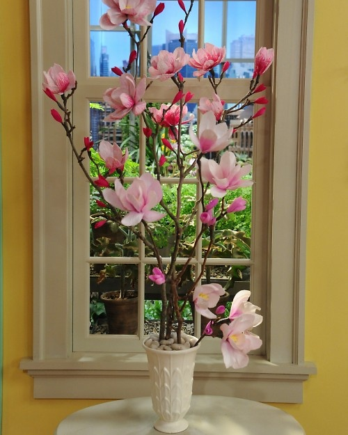 Saw these paper Japanese Magnolias being made on Martha Stewart TV today - much more beautiful than this pic but check it out they were stunning!