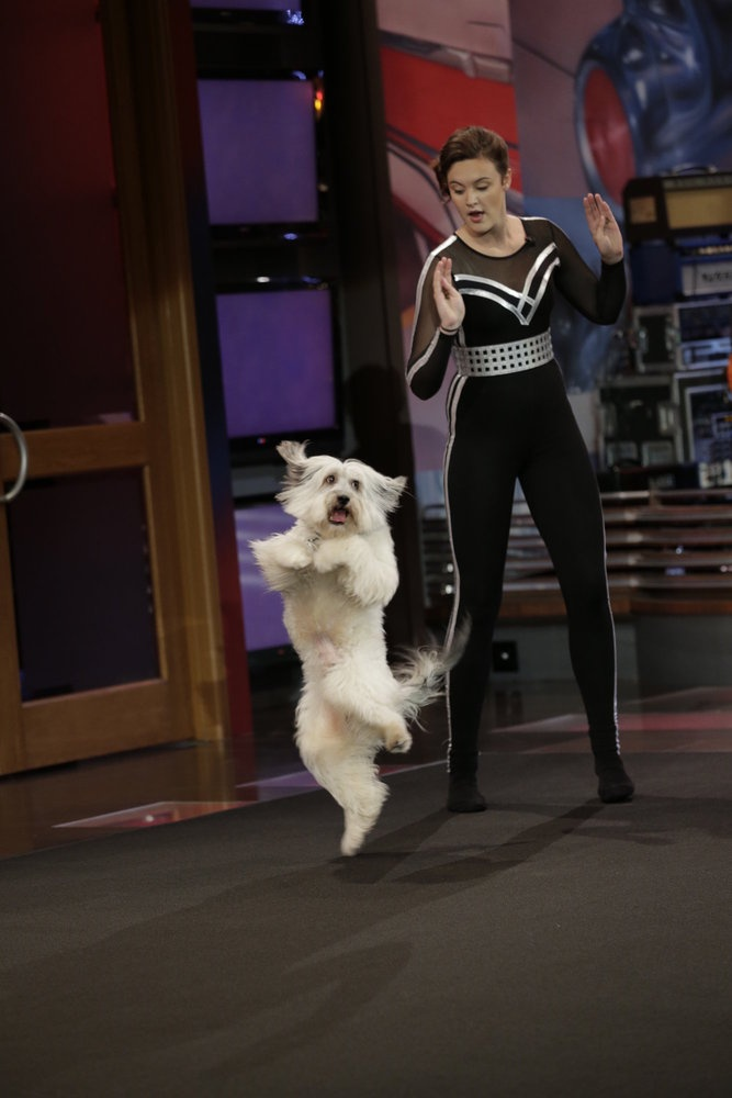 """""""Britain's Got Talent"""" winners Pudsey the Dog and Ashleigh Butler perform on The Tonight Show with Jay Leno July 11th, 2012"""