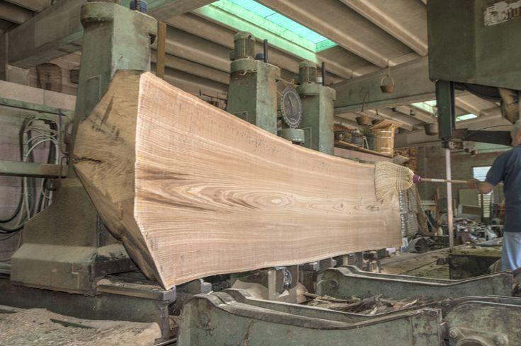 Cutting a Chestnut Log ~ Hearne Hardwoods Inc.