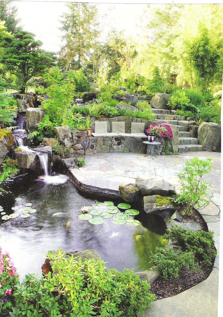 503 Best Images About Garden Water Gardens On Pinterest