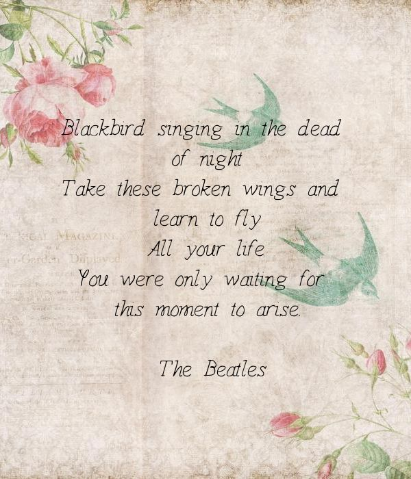 Blackbird singing in the dead of night Take these broken wings and learn to fly All your life you were only waiting For this moment to arise. ~ The Beatles