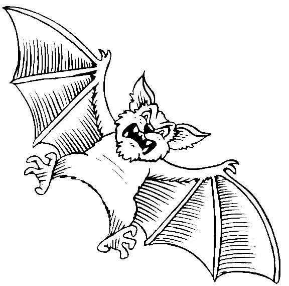Pipistrello Disegno Da Colorare Halloween