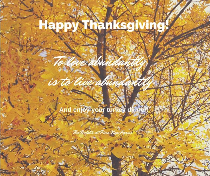 Thanksgiving wishes to our customers!