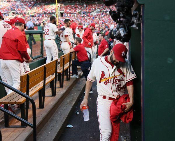 saint louis cardinals game today
