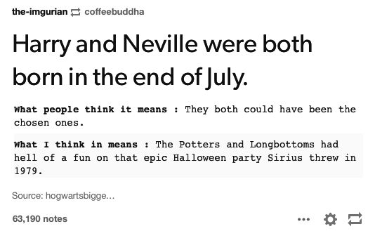 "The Potters and the Longbottoms had a very eventful Halloween. | 21 Hilarious ""Harry Potter"" Tumblr Posts That'll Make You Realize Some..."