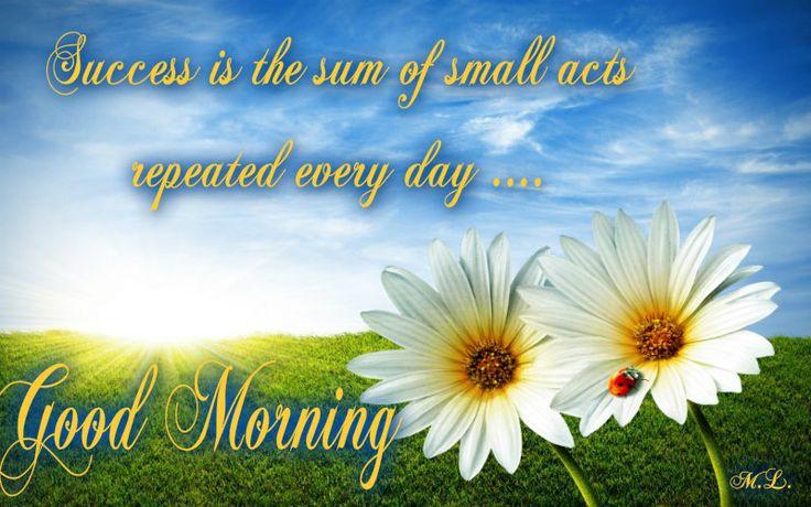 Úspěch je souhrn malých činů opakovaných každý den....
