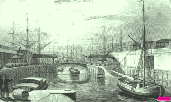 1831   London Docks Looking West.  Engraved by M. J. Starling. Jones and Co., Temple of the Muses, Finsbury Square, London.   suzilove.com