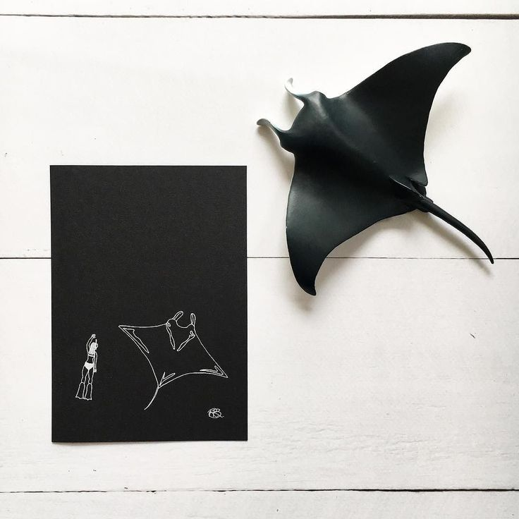 Future New Product  . In the weeks leading up to Eliza's birth I did quite a bit of drawing and designed a bunch of new products because what else would I do whilst preparing for a new baby!?! . A new 'little art' white ink print a little Manta Ray and diver. What do you think of this print? Have you been swimming with these beauties before or do you plan to?  #iwantamantarayemoji . . . . . . . . . . . . #manta #mantaray #oceanlife #sealife #marinebiology #diver #diving #mantaraydive…