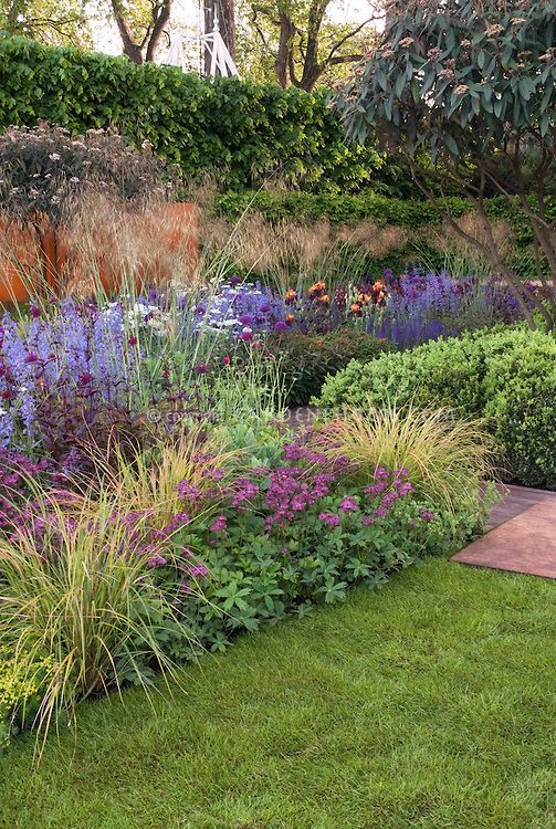 35 best grass gardens images on pinterest landscaping for Landscaping grasses varieties