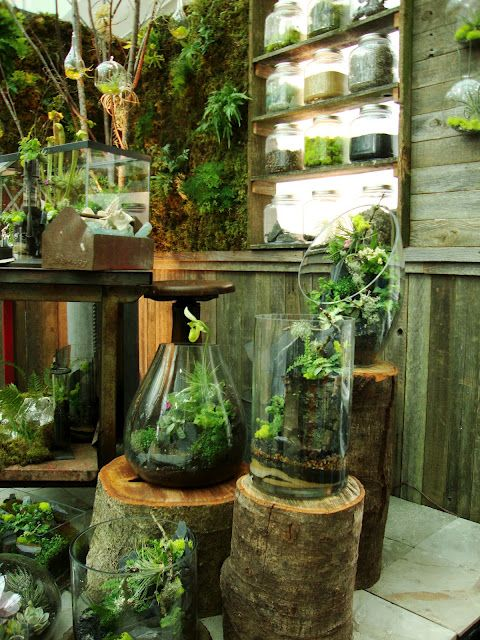 Garden in glass. I really love the garden wall too! I hope to have a room like this one day...