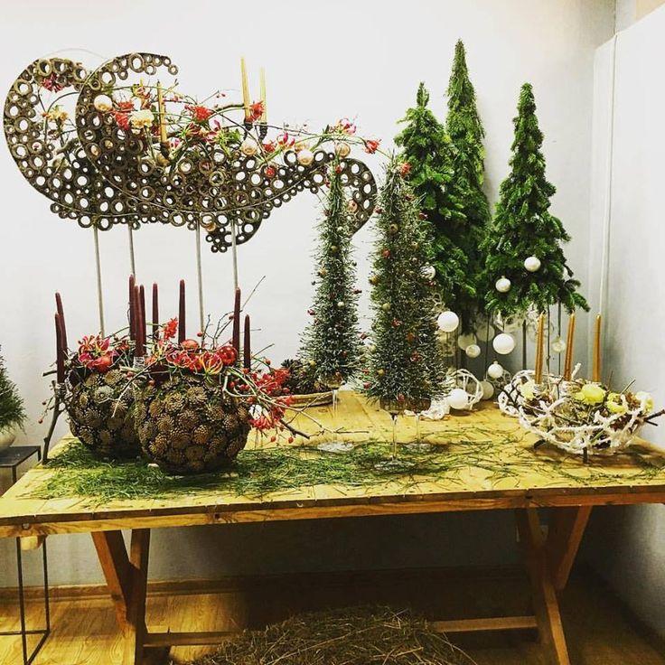 South African Flower Union -  Slava Rosca's