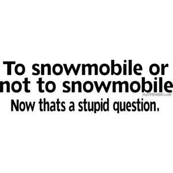 Totally stupid question... Now let it snow! ~♥~