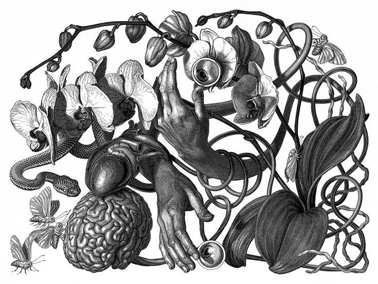Con sede en Seattle, la talentosa artista Olivia Knapp nos muestra sus increíbles dibujos detalladamente intrincados donde mezcla el surrealismo y la metáfora.