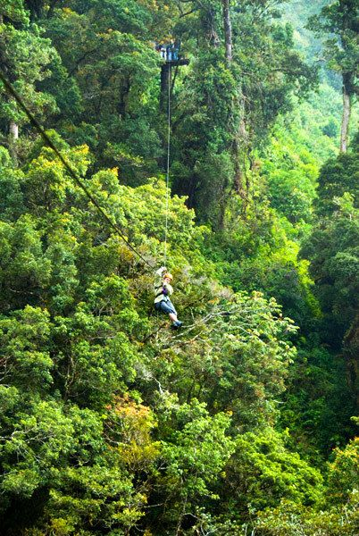 Riding a zip line through the canopy. Costa Rica Vacation Packages, Costa Rica Fly & Drive with Tortuguero