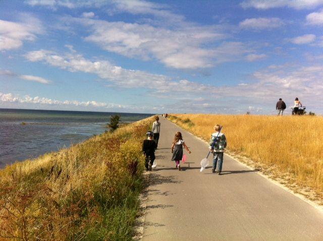 Klydesøen nær Pinseskoven. Tag ud og fisk, gå el. cykel og overnat i shelter helt gratis.