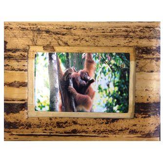 Banana Bark Picture frame to benefit Sumatran orangutans.