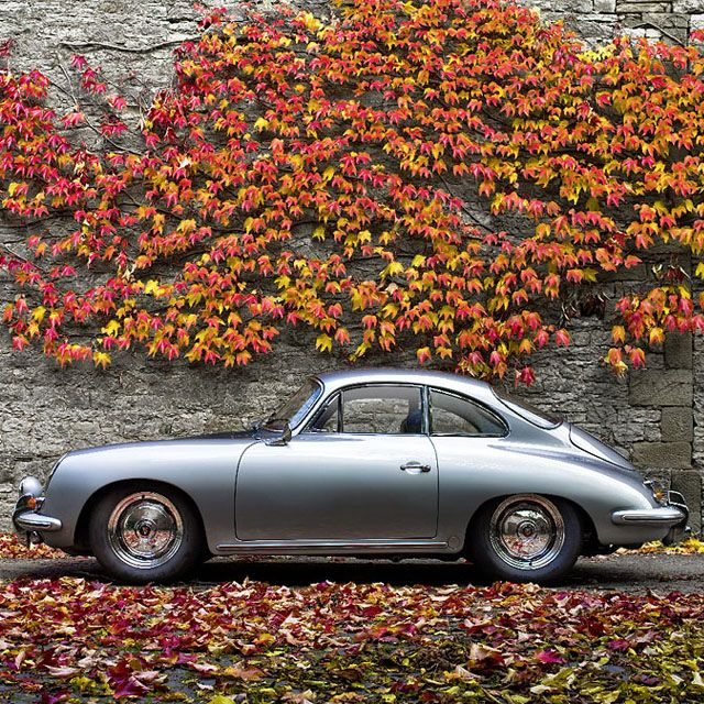 Silver Porsche 356 - this photo gives me every answer to the allure of Porsche. This car & snapshot are perfect