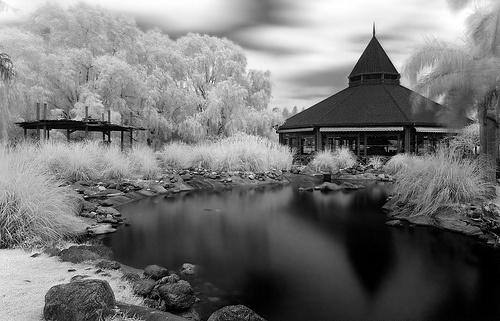 #Temaiken Lake