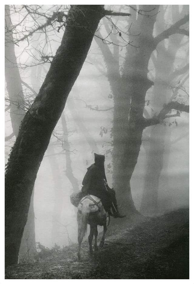αγωγιάτης στην ομίχλη Όλυμπος _Τάκης Τλούπας