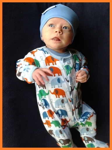 Magnificent Baby, just adorable!! Meet gorgeous Oscar in his Elephants Footie! Thank you, Thank you to mum Annette for sending in our first Magnificent Baby pic and the fabulous feedback! Yay!