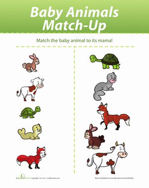 Baby Animal Match Up Baby Animals Pictures Baby Animals