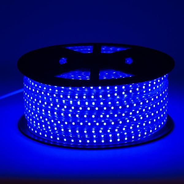120v Led Strip Light Blue Sold In Sections Strip Lighting Led Strip Lighting Flexible Led Strip Lights