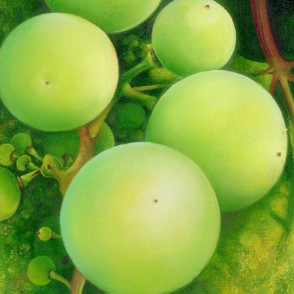 """OIL PAINTING """"The Grapes"""" by Anna Miarczyńska, via Behance"""