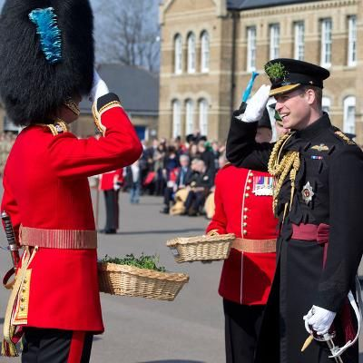 Hot: Prince William Attends St. Patrick's Day Parade Sans Kate Middleton