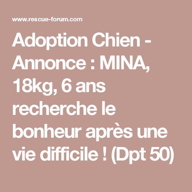 Adoption Chien - Annonce : MINA, 18kg, 6 ans recherche le bonheur après une vie difficile ! (Dpt 50)