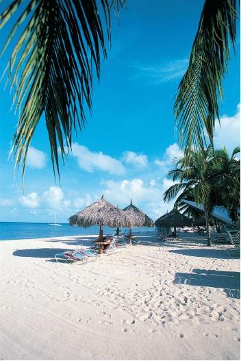 Google Image Result for http://bryant3.bryant.edu/~cdresser/Aruba-Beach[1].gif
