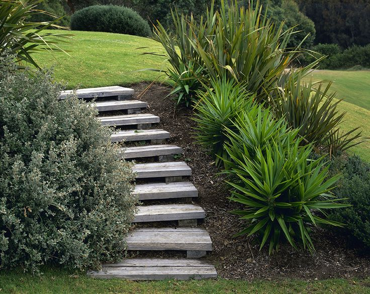 Steps and Yucca