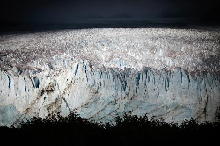 www.papertreephotography.com.au