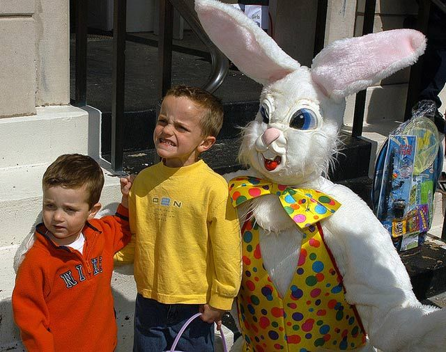 25+ Best Ideas About Easter Bunny Pictures On Pinterest