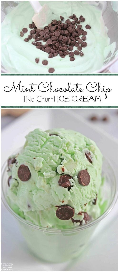 Homemade Mint Chocolate Chip Ice Cream Recipe! Easy Ice Cream Recipe and a fun St. Patrick's Day Treat!