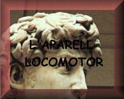 Aparell locomotor