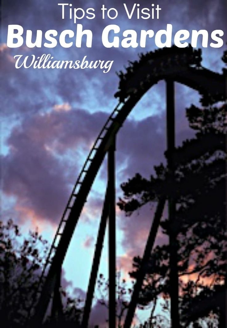 Learn my tips on How to Maximize Your Visit to Busch Gardens Williamsburg. Don't spend all that money on a ticket and spend your entire time in line!