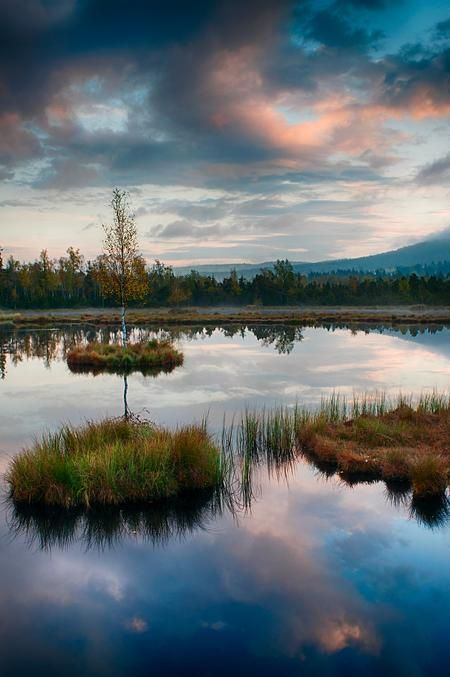 Morning at the National Park Sumava Photo by Martina Valihrachova — National Geographic Your Shot